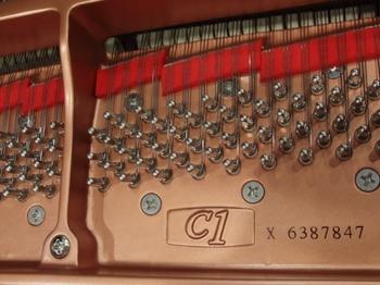 CIMG1402 (550x413).jpg