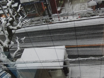 CIMG1440 (2018.1.22大雪).jpg
