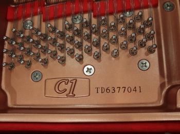 CIMG1410 (450x338).jpg