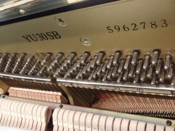 CIMG1472 (550x413).jpg