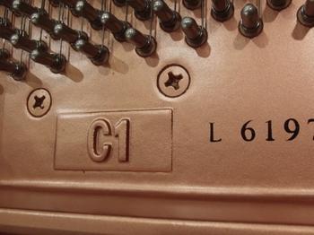 CIMG1516 (550x413).jpg